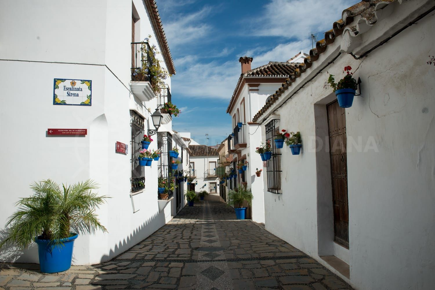Estepona welcomes record tourism numbers in July