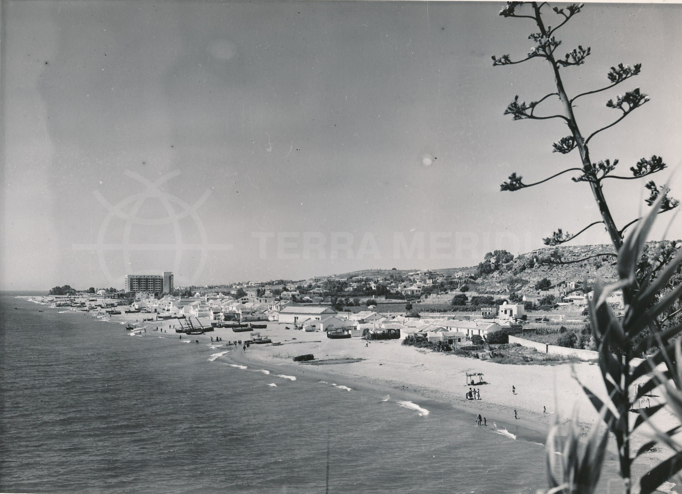 History of the Costa del Sol and Tourist Information