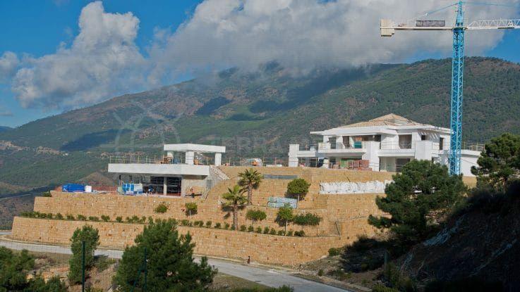 Fase 8: preparación de la parcela y de las terrazas para el paisajismo
