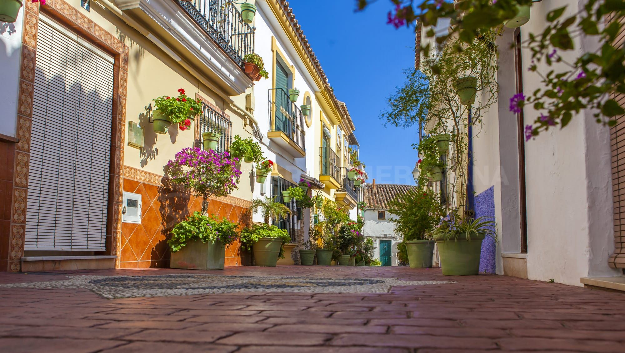 For ABC, Estepona is a green and pleasant town
