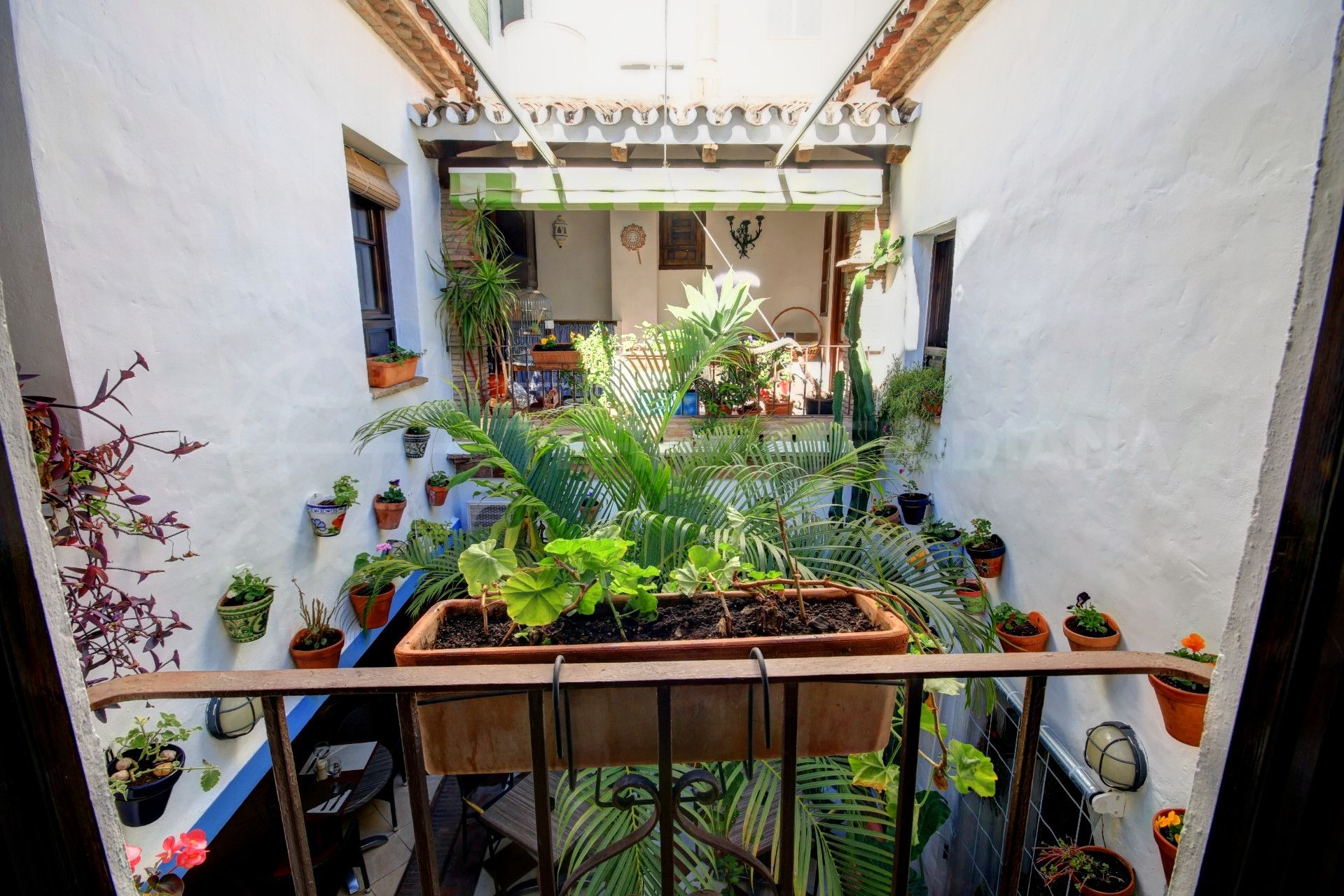 typical courtyard of townhouse in Estepona