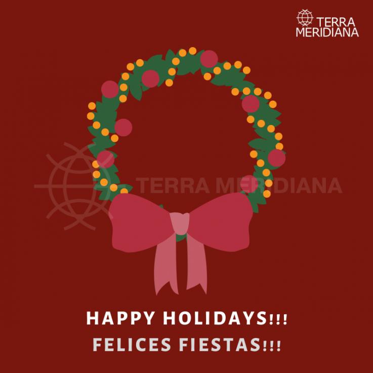 Christmas in Marbella and Estepona