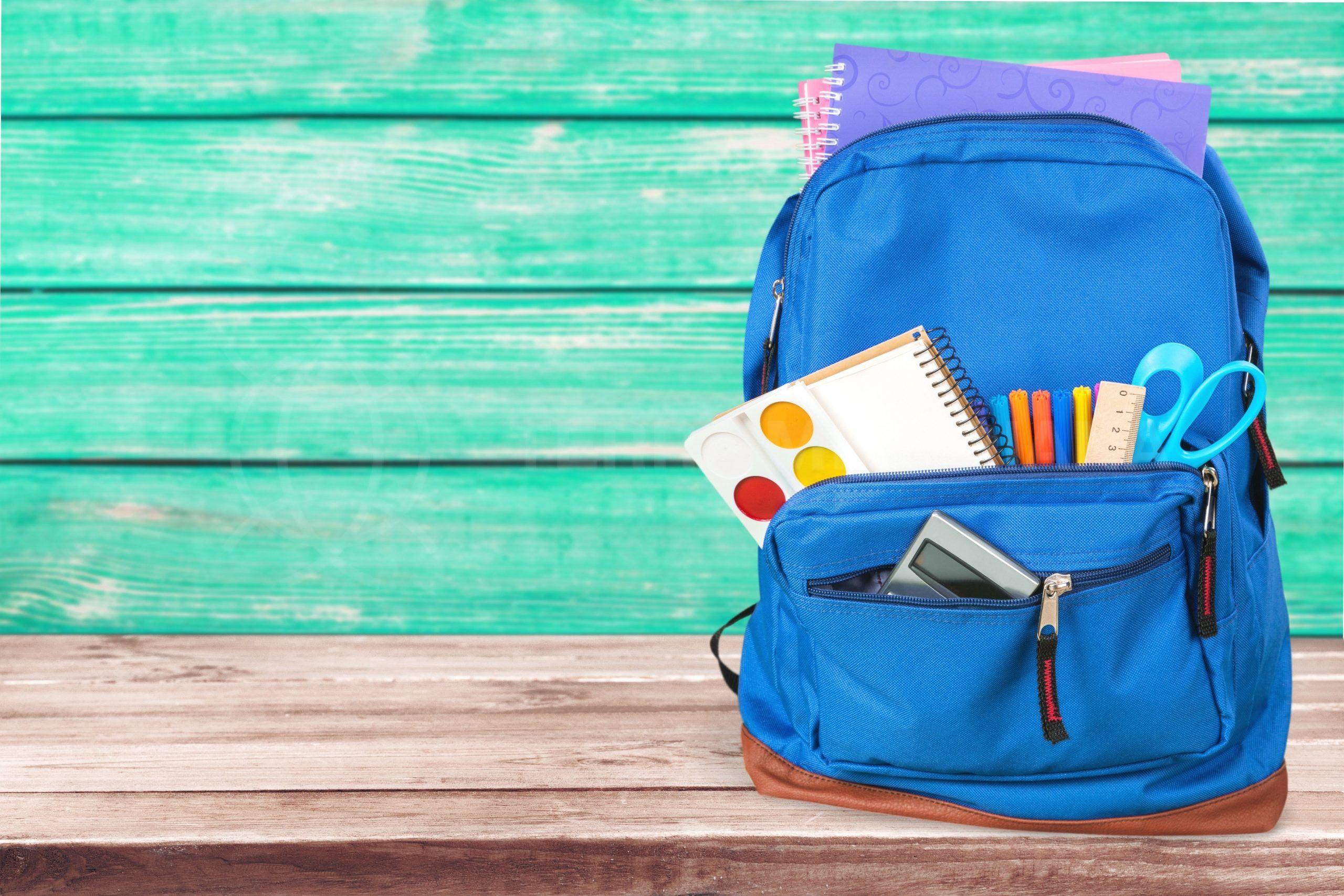 Schools in Marbella 2020